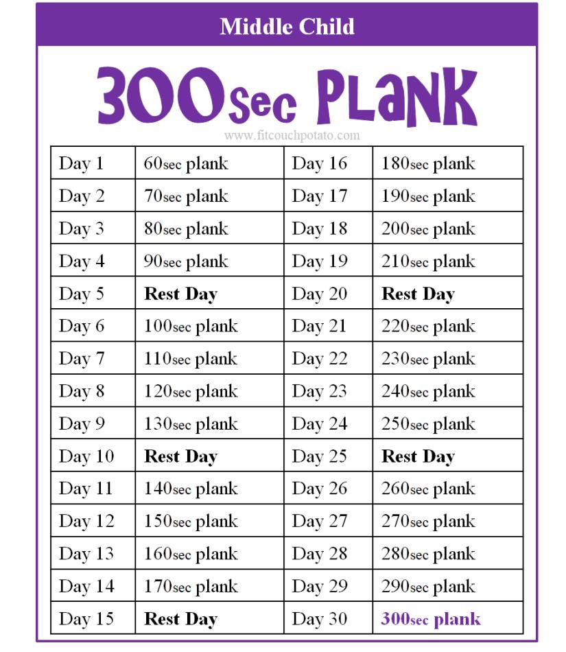 300sec plank 2